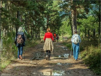 Walking the borough boundary